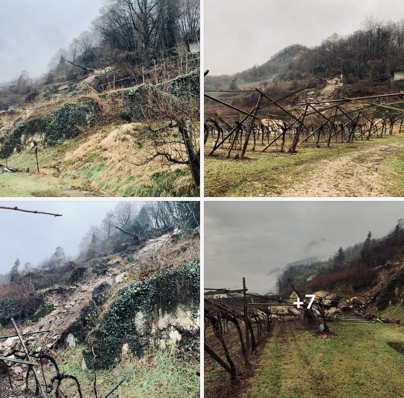 Naturgefahren in den Alpen - Salurn Südtirol Gefahrenzonen Bauen